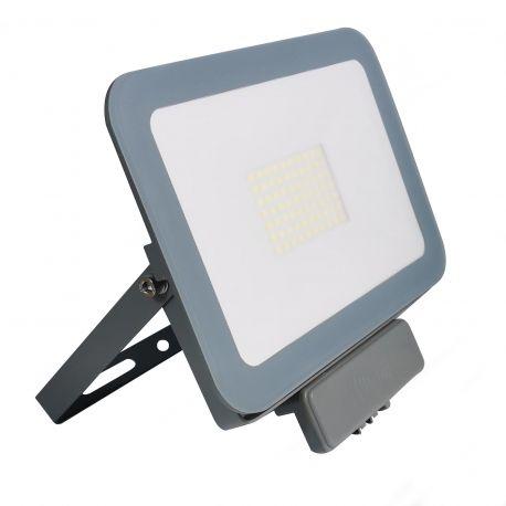 Projecteur LED 30W ProLine Blanc Froid avec détecteur de mouvement 6000K