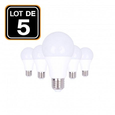 Lot 5 Ampoules LED E27 20W 2700K Blanc Chaud Haute Luminosité