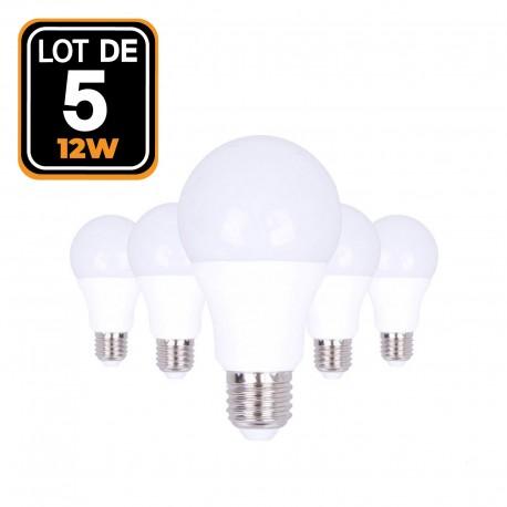 Lot de 5 Ampoules LED E27 12W Blanc Froid 6000K - Projecteur LED Shop