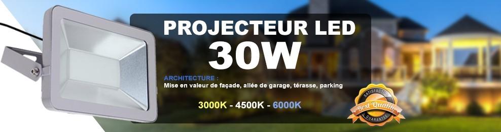 Projecteur Led 30W